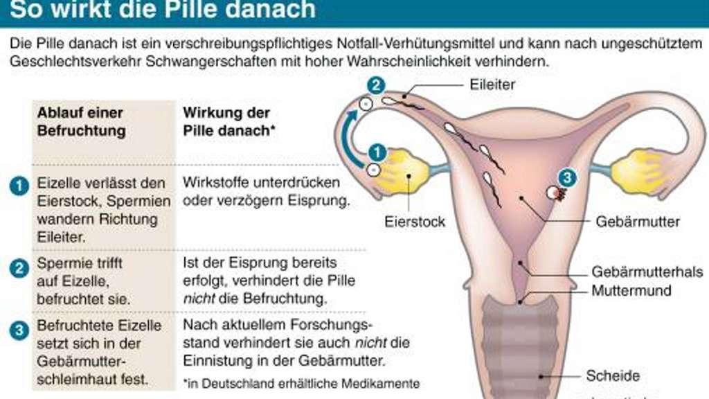 duetact tabletten schwangerschaft
