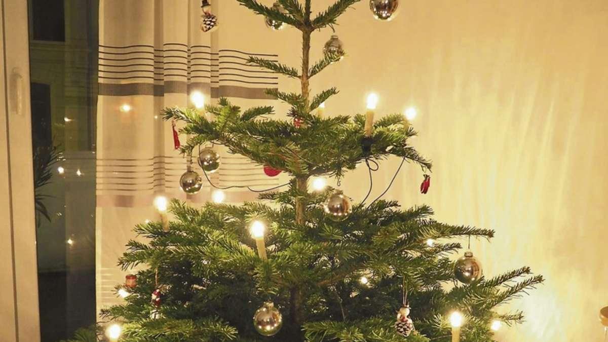best 28 weihnachtsbaum pflege weihnachtsbaum im topf pflege weihnachten 2017. Black Bedroom Furniture Sets. Home Design Ideas