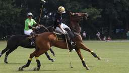 Internationales Poloturnier in Appel