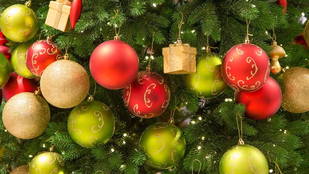 l neburg sucht schon jetzt die sch nsten weihnachtsb ume. Black Bedroom Furniture Sets. Home Design Ideas