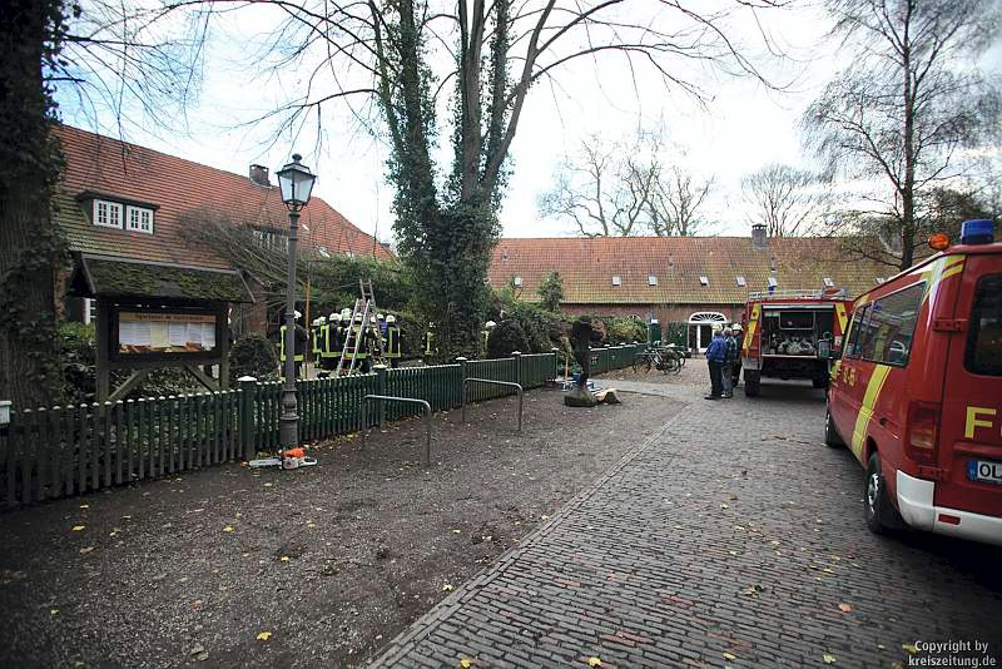 Sturm in Niedersachsen: Linde stürzt um und beschädigt Klosterruine ...