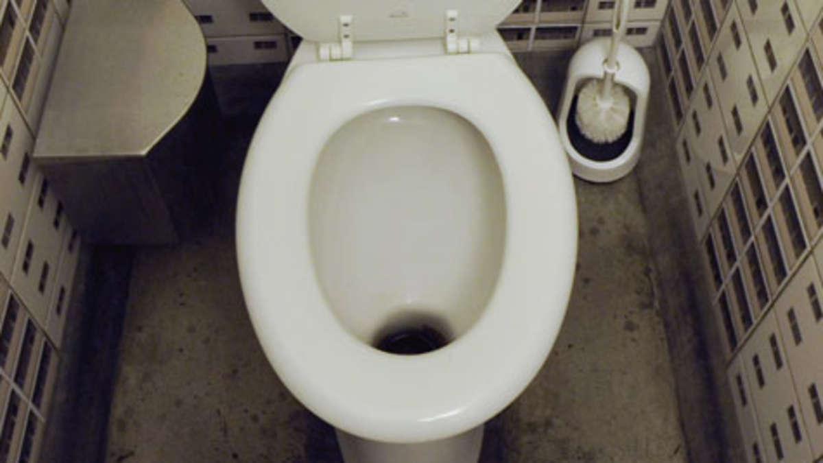 meppen 16 j hriger versucht teich ber toilette zu leeren niedersachsen. Black Bedroom Furniture Sets. Home Design Ideas