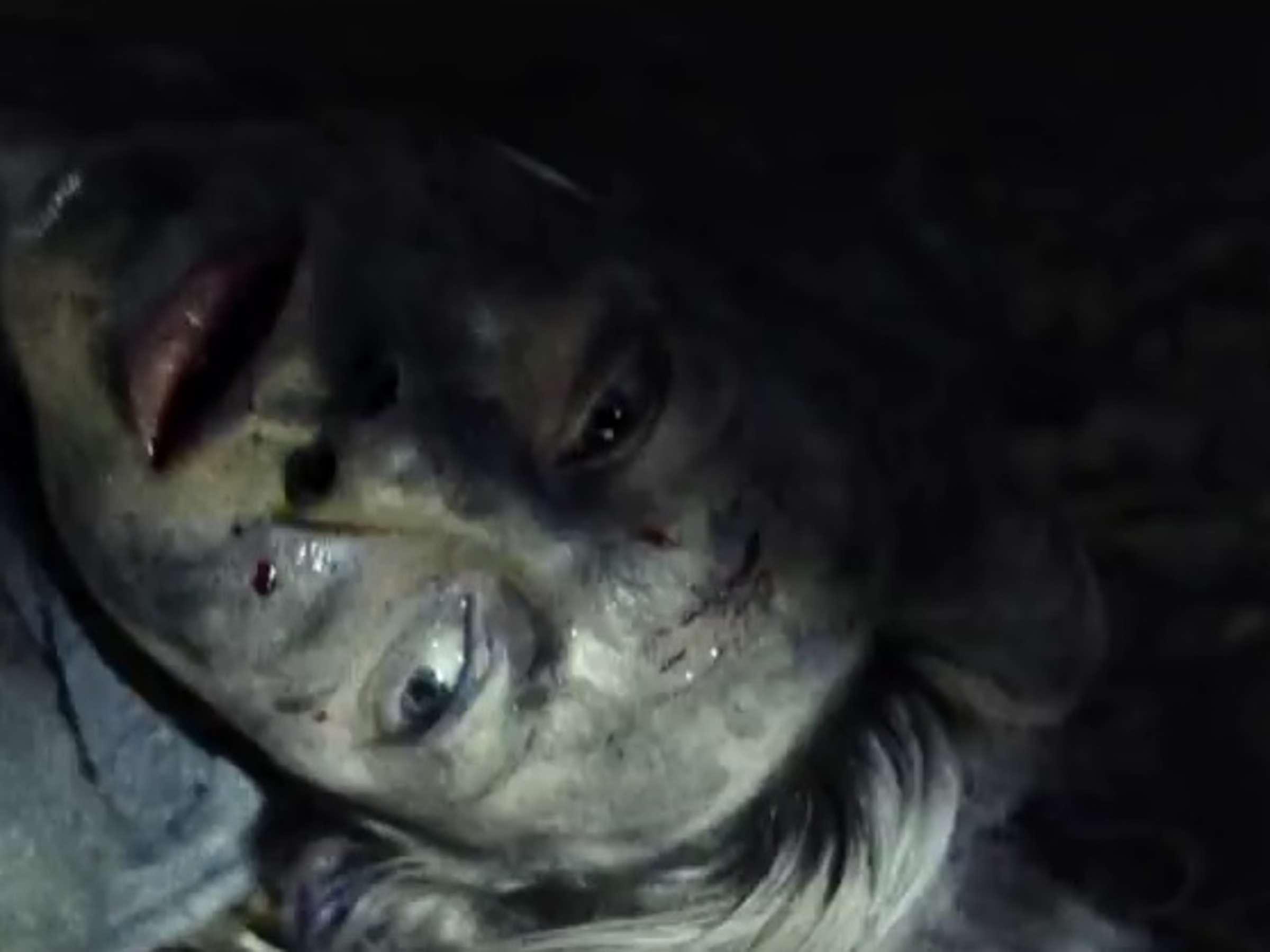 Hexenmythos Fortsetzung Von Blair Witch Project Kommt Im Oktober In Die Kinos Lauft