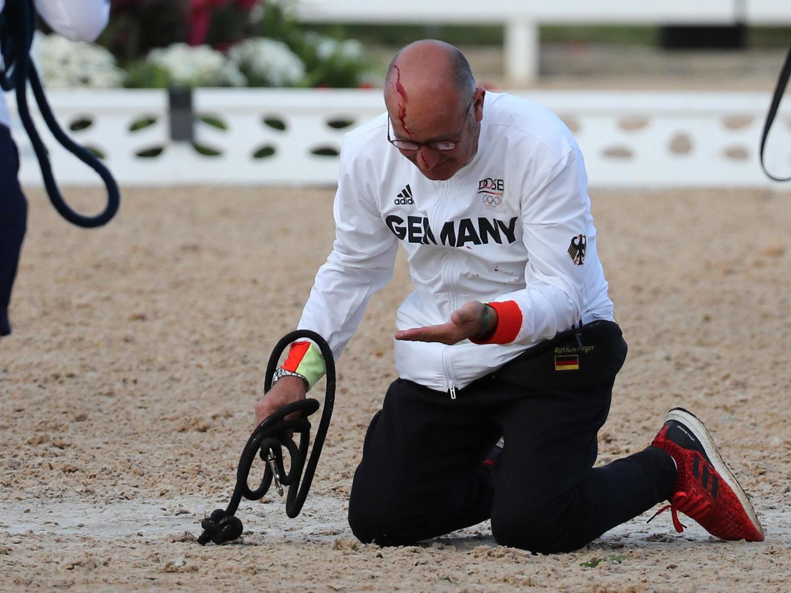 Nach Dressur-Gold: Pferd verletzt Betreuer