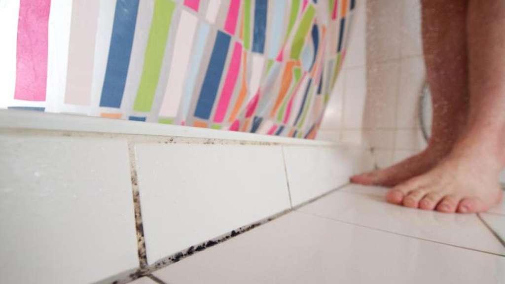 vermieter muss im luftdichten bau schimmel beseitigen wohnen. Black Bedroom Furniture Sets. Home Design Ideas