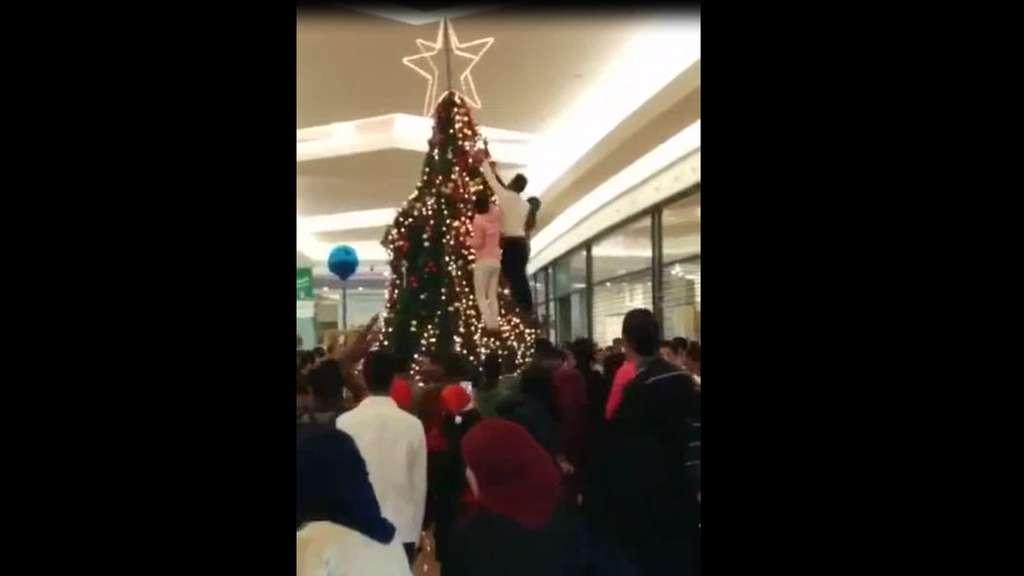 Weihnachtsbaum Herkunft.Flüchtlinge Plündern Weihnachtsbaum In Weserpark Bremen Nicht