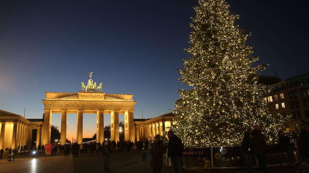 best 28 weihnachtsbaum berlin alle jahre wieder weihnachtsb 228 ume von happy tree. Black Bedroom Furniture Sets. Home Design Ideas