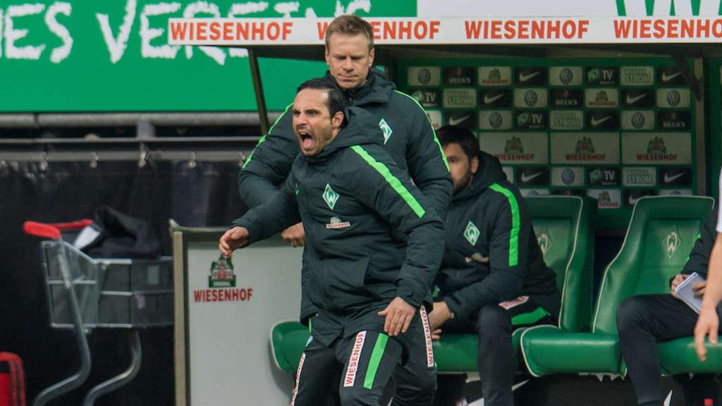 Syker Kreiszeitung Werder