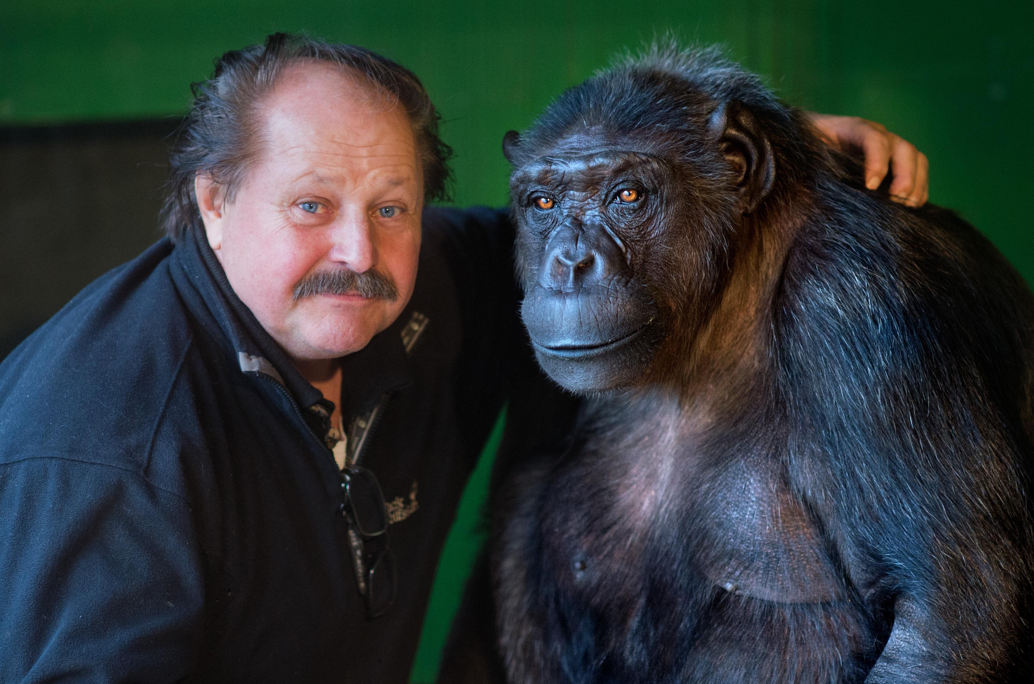 Schimpanse Robby darf nicht im Zirkus bleiben