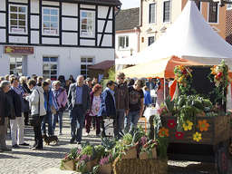 Food-Festival in Achim