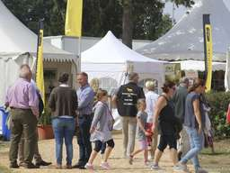 Verden International: Country Days laden zum Schlendern ein