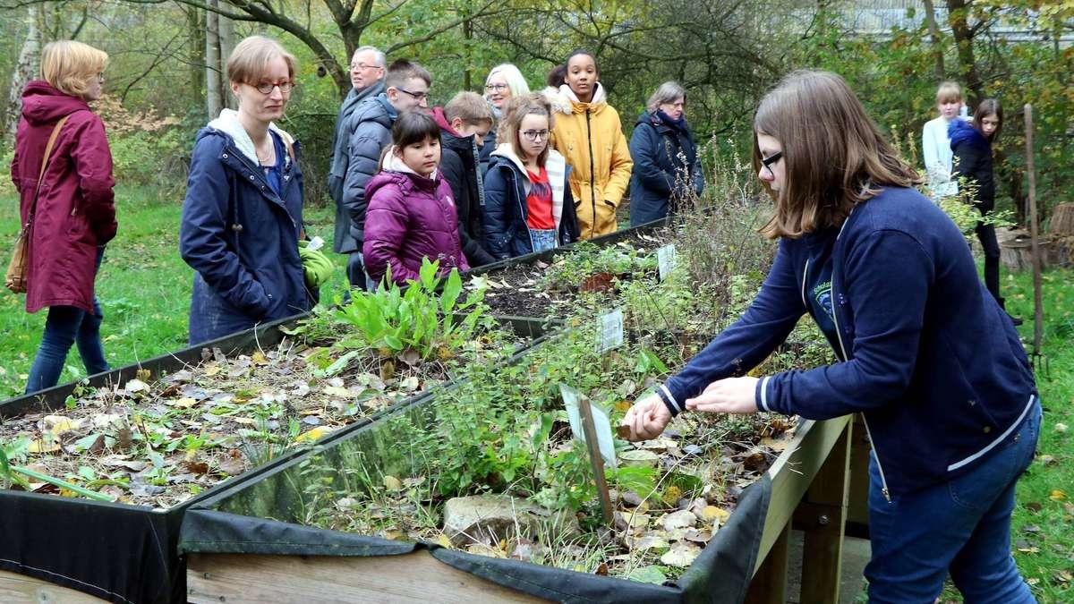 GFS Diepholz jetzt im Kreis der Naturpark-Schulen | Diepholz - kreiszeitung.de