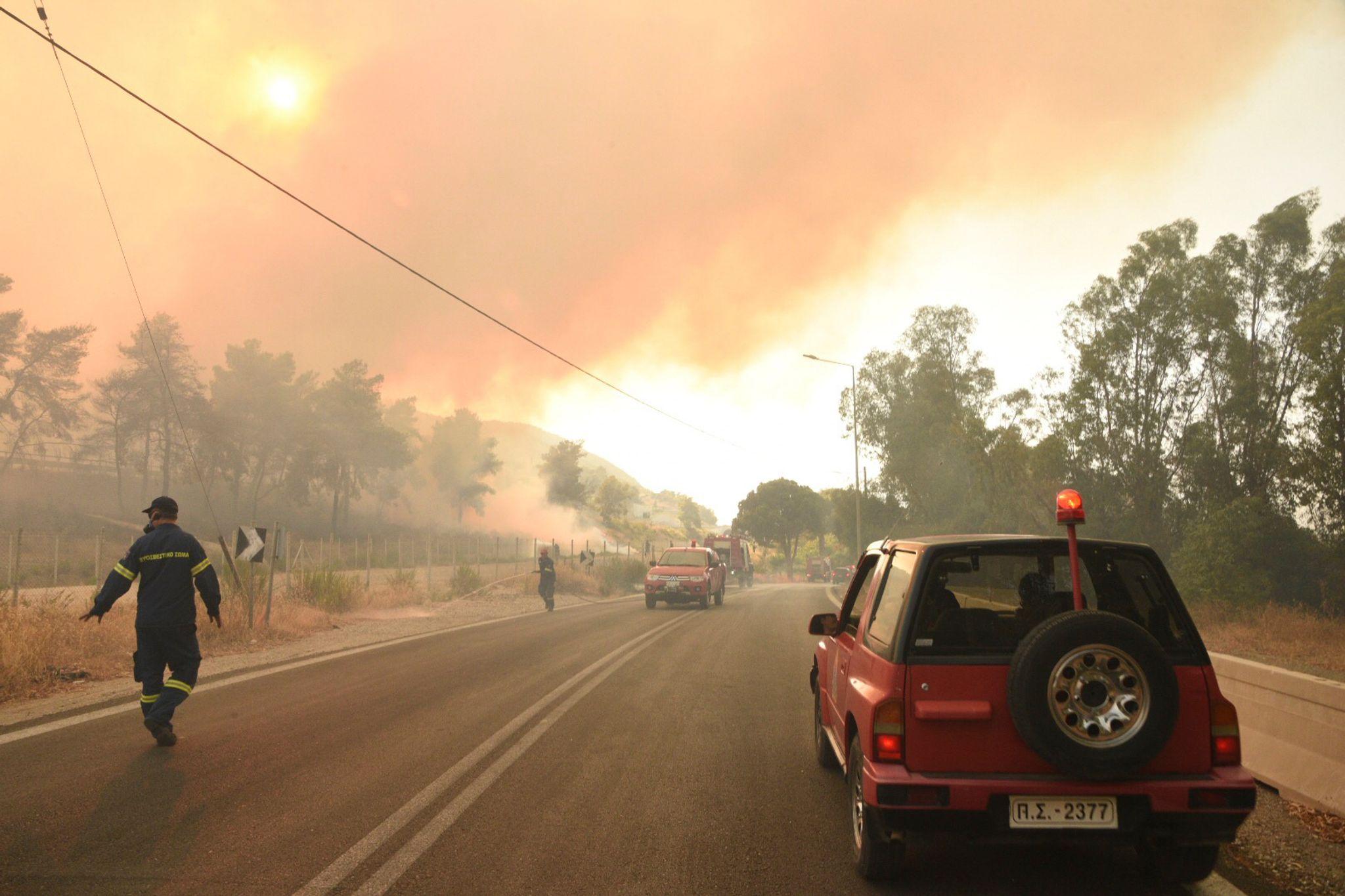 Brände und Hitze ohne Ende in drei Mittelmeerstaaten